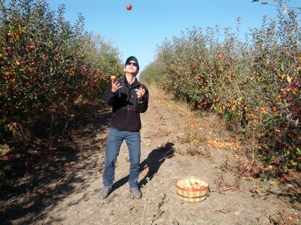Apple Picking 10